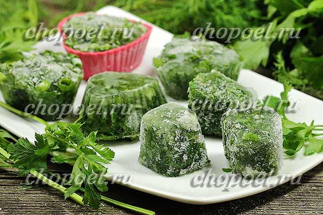 Заморозка зелени на зиму: лучшие рецепты