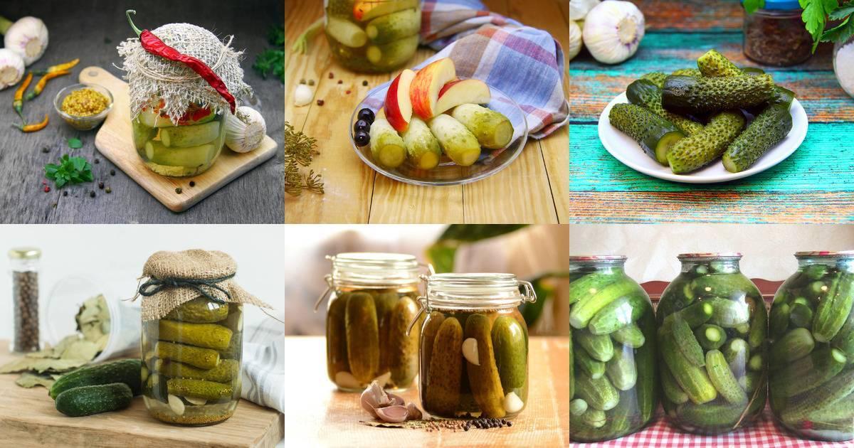Топ 9 рецептов консервированных огурцов без уксуса на зиму
