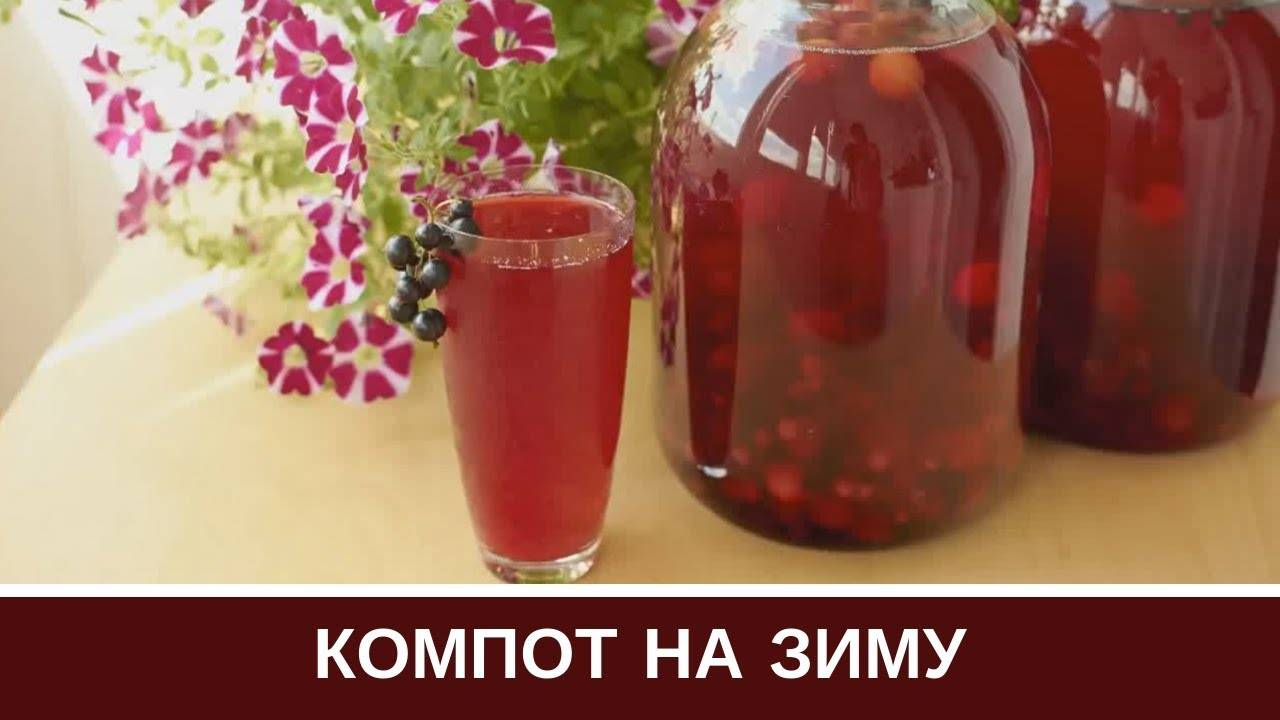 Компот из граната в домашних условиях: 9 лучших пошаговых рецептов закатки