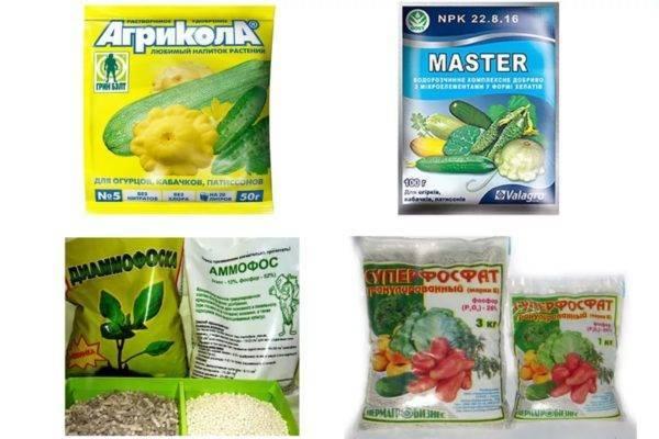 Чем подкормить огурцы, чтобы не желтели листья: народные средства и микроэлементы