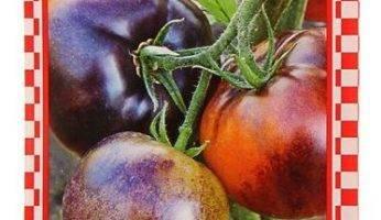 Описание сорта томата самохвал, особенности выращивания и ухода