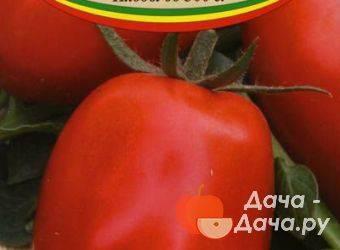 Томат северянин: описание и характеристика сорта с фото