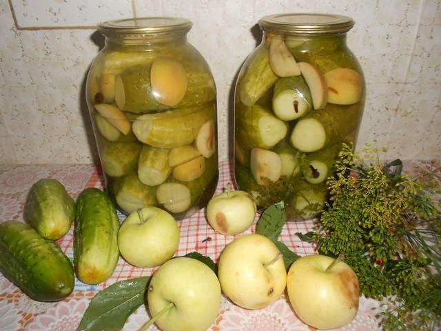 Яблоки мочёные на зиму — домашние рецепты приготовления моченых яблок