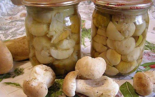 Как приготовить маринованные белые грибы на зиму?