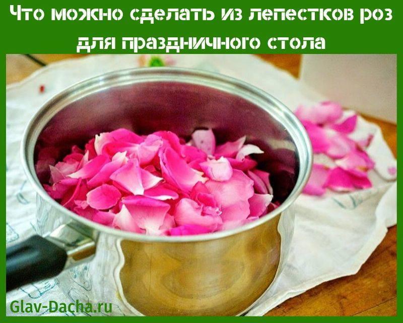Настойка из лепестков роз на водке применение