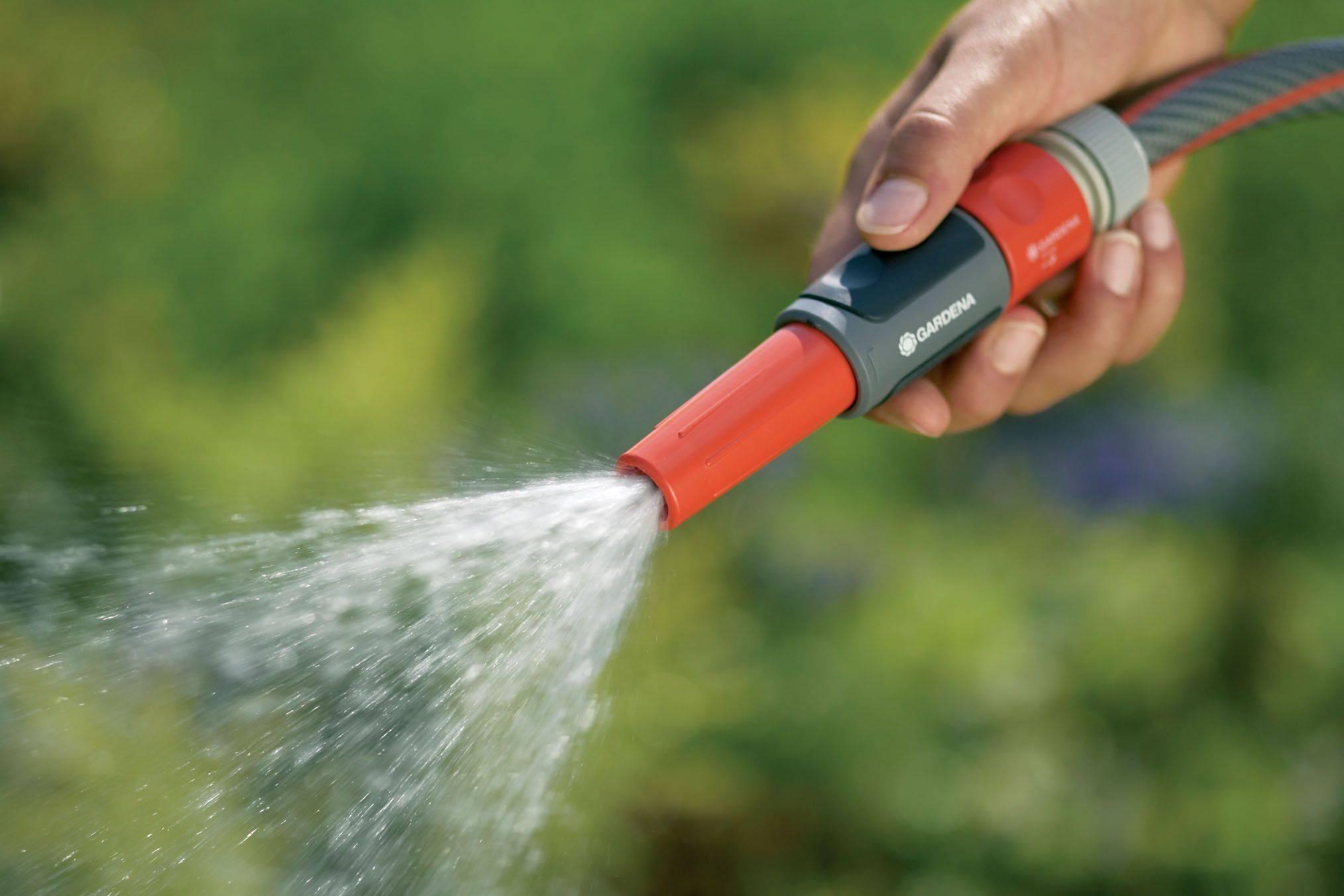 Как часто поливать морковь – советы опытных садоводов и любителей