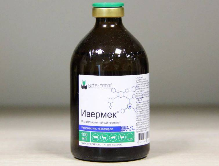 Инструкция по применению лекарственного препарата ивермек or