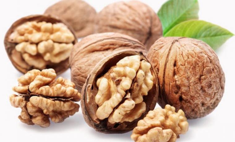 Все о морозостойких сортах грецких орехов. отличаются ли правила выращивания от обычных?
