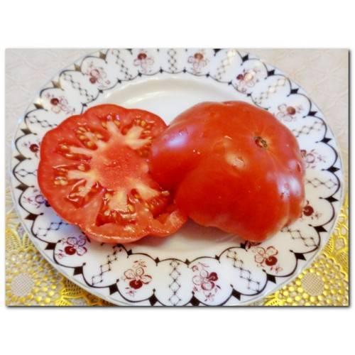 Описание и характеристики сорта томата Лотарингская красавица