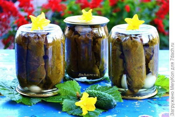Огурцы в виноградных листьях на зиму: закуска, листья для долмы и рассол для супа