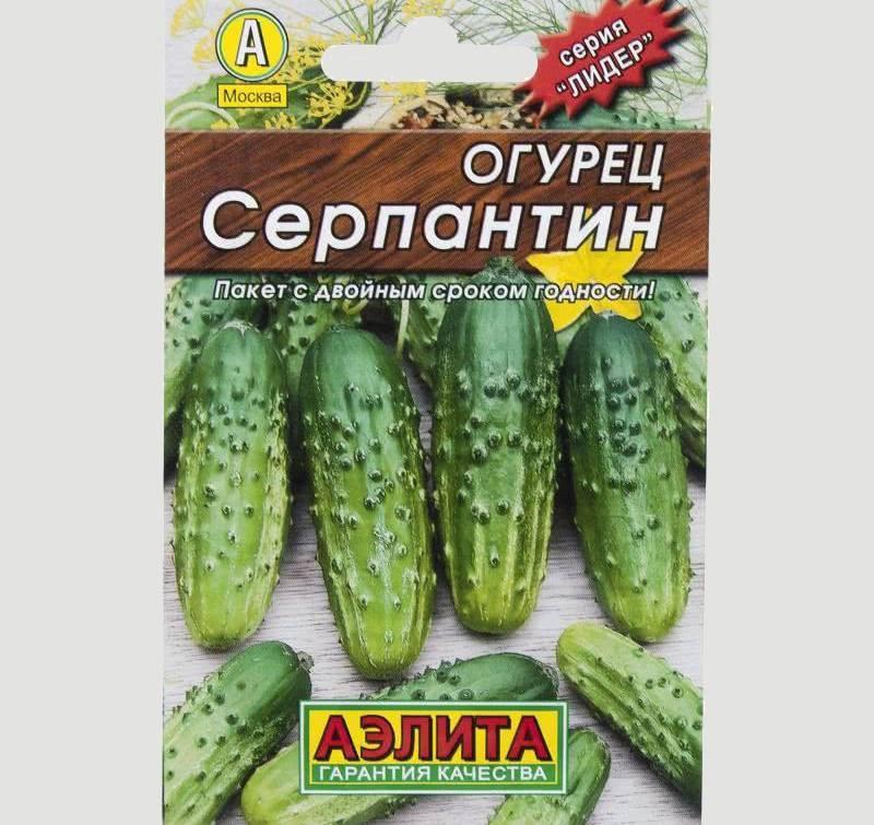 Характеристика и урожайность сорта огурцов «серпантин f1»