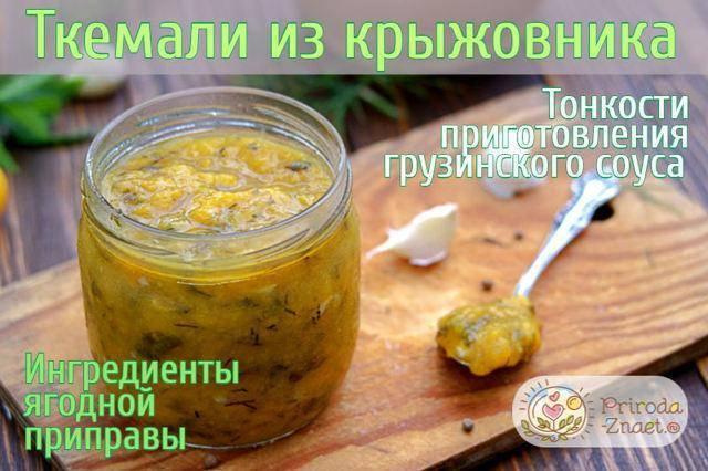Приправа из яблок — пошаговый рецепт приготовления чатни и другие рецепты яблочных соусов на зиму