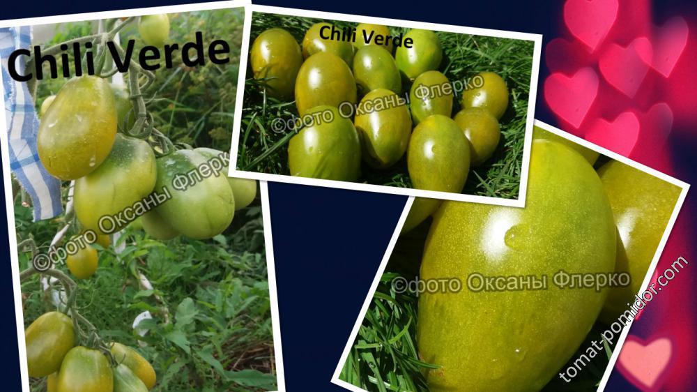 Помидоры черри выращивание и характеристика, описание сорта