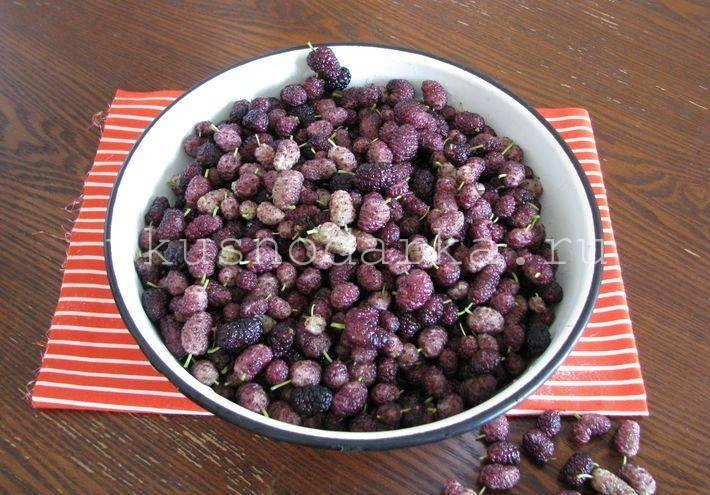 11 рецептов пошагового приготовления заготовок на зиму из йошты