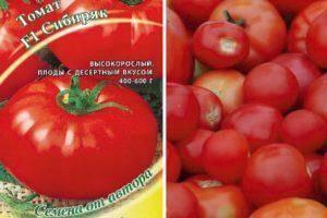 Томат женечка: характеристика и описание сорта, урожайность с фото