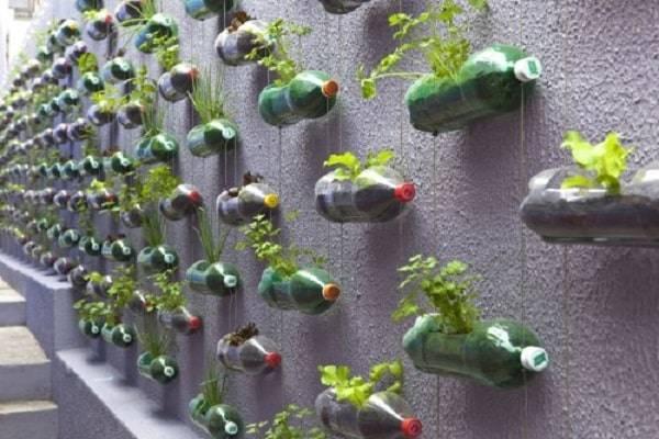 Выращивание огурцов в пластиковой таре в домашних условиях.