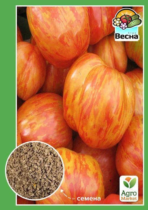 Сорт томатов «король красоты»: отзывы, описание, характеристика, урожайность, фото и видео