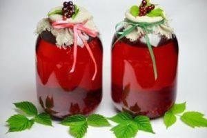 Компот из слив на зиму – 10 простых рецептов с фото пошагово