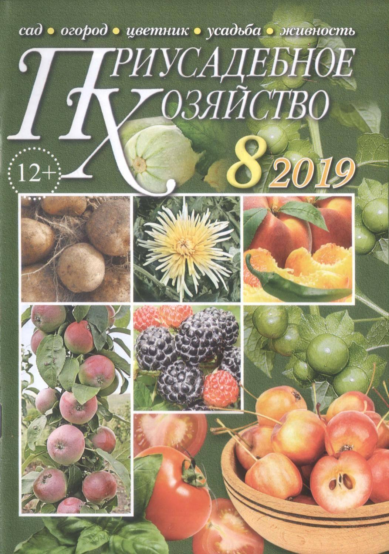 Коротко о способах и технологиях выращивания томатов