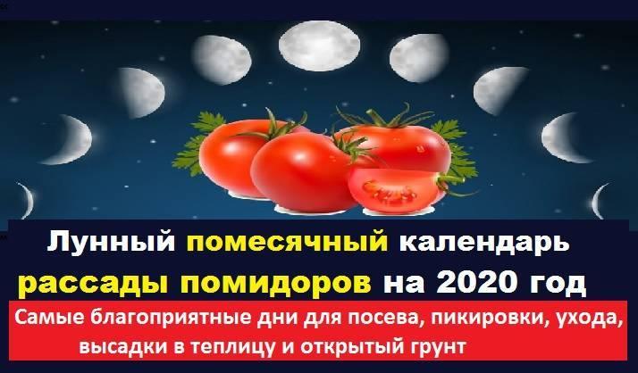 Лунный календарь для посева рассады семенами на 2020 год