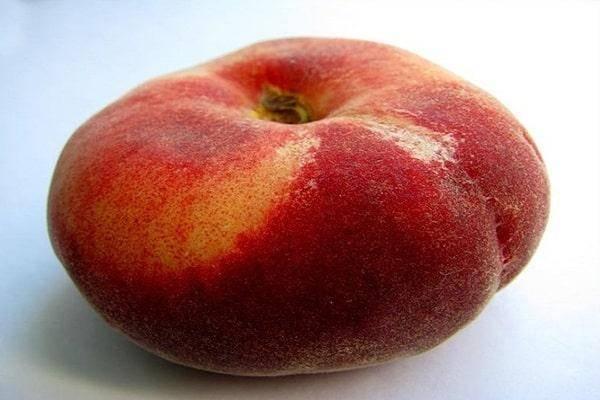 Технология выращивания инжирного персика на даче