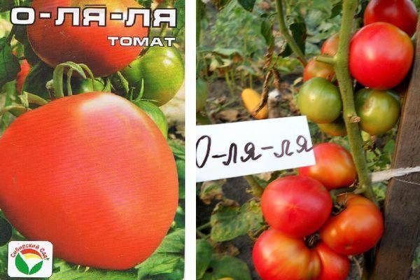 Выращивание, характеристика и описание томата сорта ля ля фа