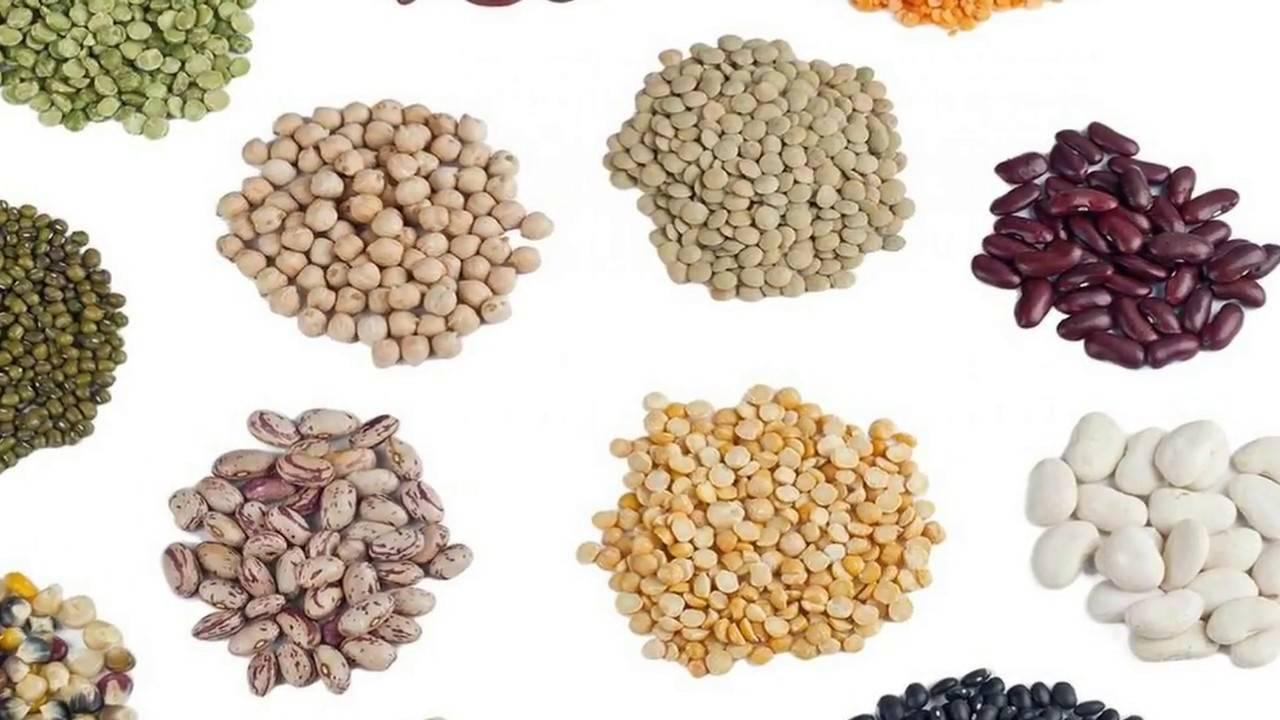 Как хранить семена цветов или овощей в домашних условиях
