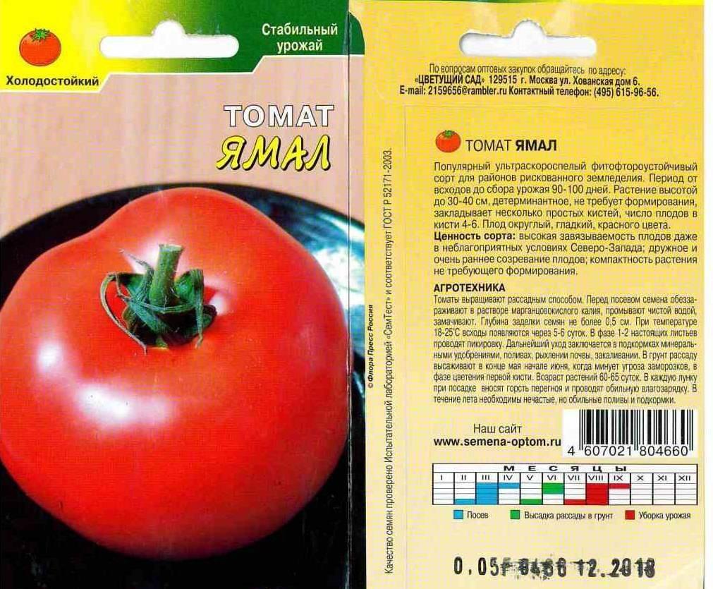 Томат «ямал»: самый урожайный и ранний среди штамбовых