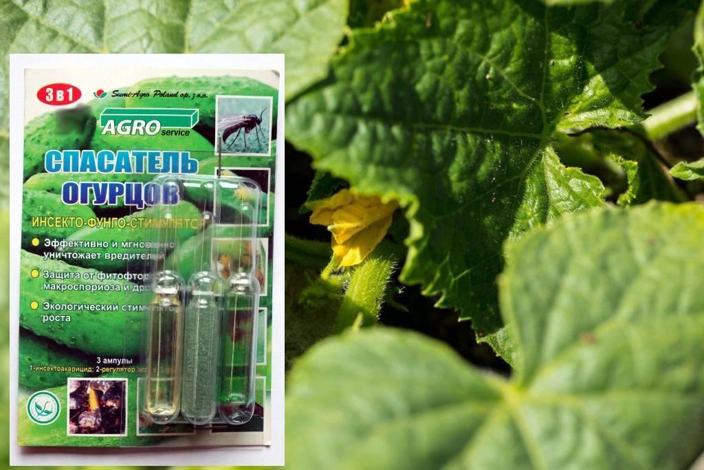 Инструкция по применению препарата клотиамет от колорадского жука