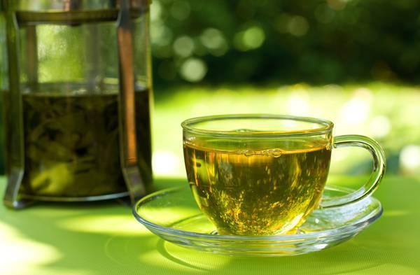 Растение бадан, лечебные свойства и противопоказания
