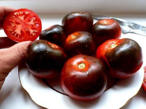 Томат красный уголь — описание и характеристика сорта