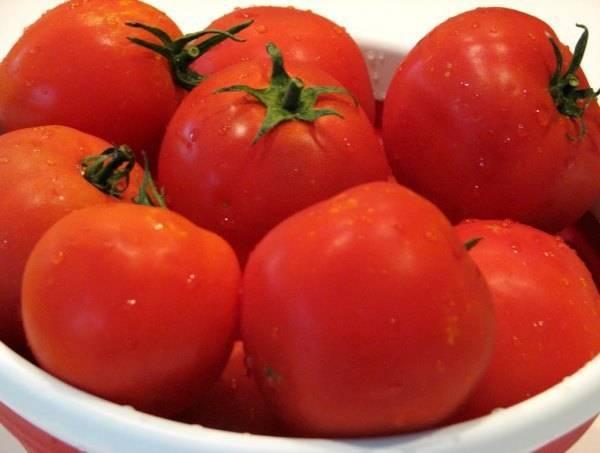 Сорт томата «локомотив» — простой в уходе и вкусный томат, его описание и характеристики