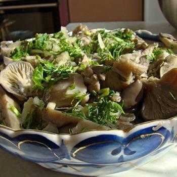 Как солить вешенки: рецепты заготовки грибов на зиму