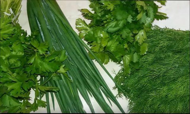 Заготовка кинзы на зиму: сушка, заморозка, соление, хранение в маринаде