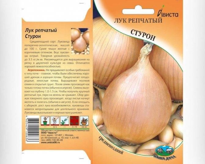 Обзор характеристик и описание сорта лука халцедон, выращивание и уход