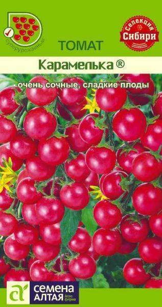 Описание сорта томата Безумие Касади, его характеристика и урожайность