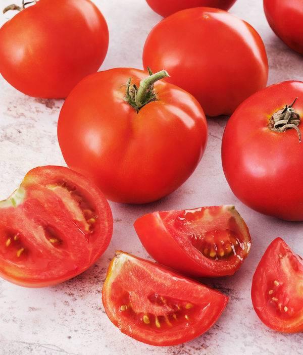 Сорта и гибриды томатов для грунта и подоконника