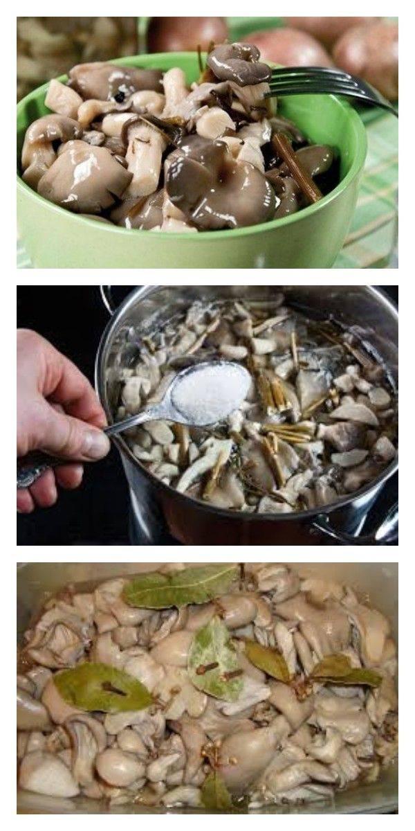 Вешенки соленые, рецепт приготовления с пошаговым описанием