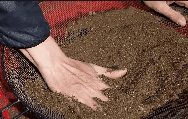 Как подготовить теплицу к весне, чтобы не рисковать урожаем