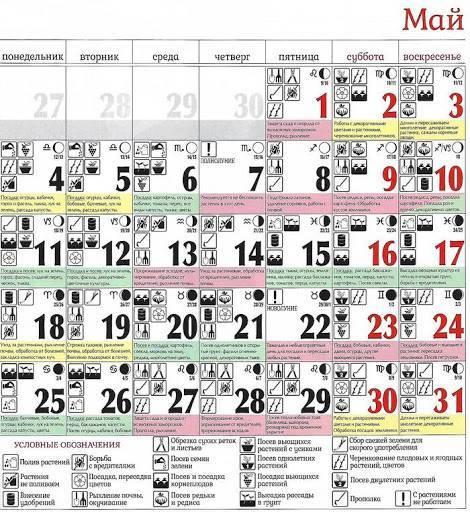 Лунный календарь огородника на 2020 год | лунный посевной календарь 2020