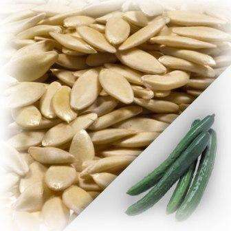 Как получить семена из огурцов своими руками?