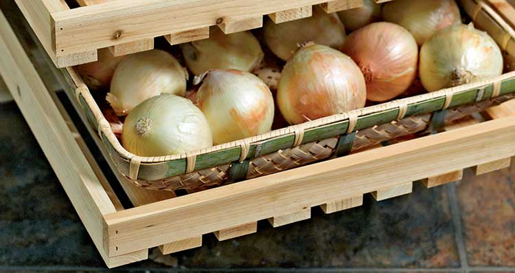 Хранение лука репчатого, зеленого, севка и порея в условиях квартиры и своего дома зимой