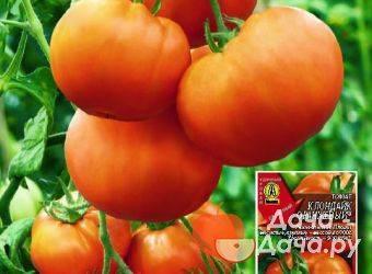 Томат клондайк — описание сорта, урожайность, фото и отзывы садоводов