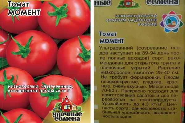 Правила посадки и выращивания крупноплодного томата бабушкино