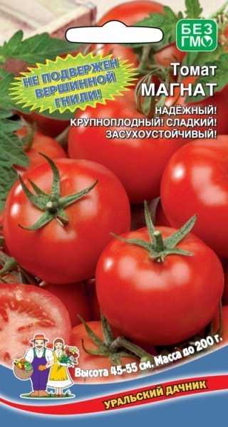 Полное описание и характеристики сорта томата президент
