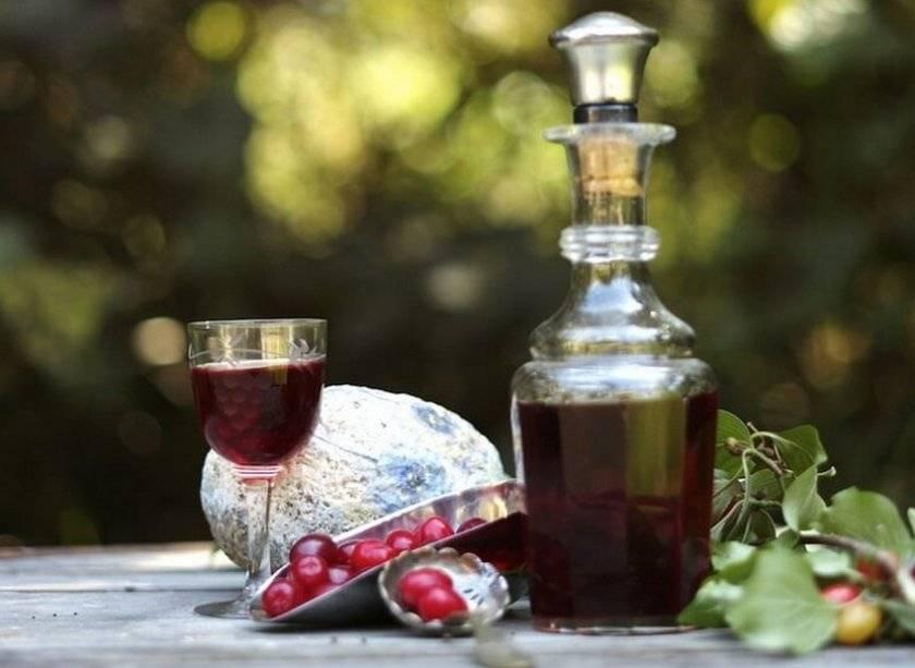 5 простых рецептов пошагового приготовления вина из алычи в домашних условиях