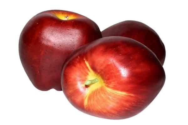 Яблоня горнист: особенности сорта и ухода