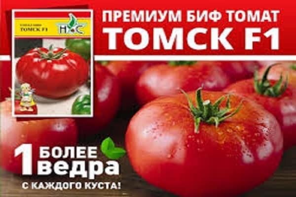 Описание и характеристика томата сорта сибирская тройка