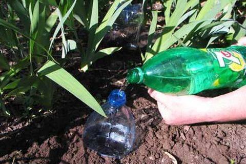 Как сделать полив из пластиковой бутылки
