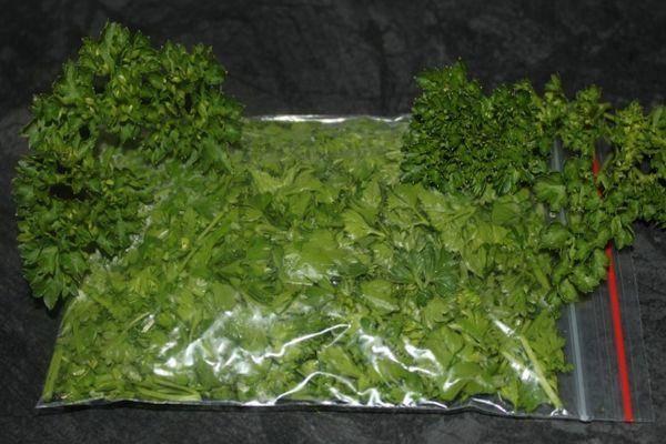 Заготовка и хранение зелени на зиму
